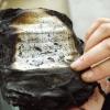 Qur' an Burning - 05