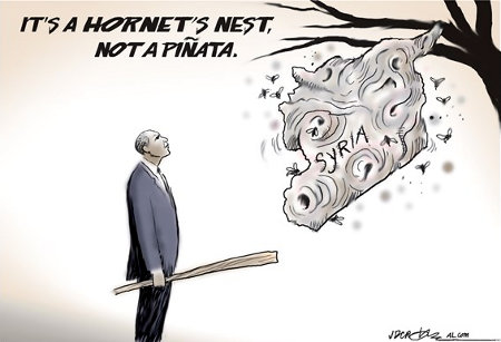 It's a Hornets' Nest, Boy, Not a Pinata