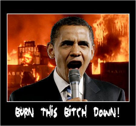 Obama:  Burn This Bitch Down!