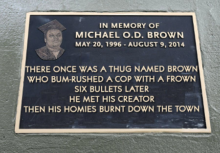There once was a thug named Brown Who bum-rushed a cop with a frown Six bullets later He met his creator Then his homies burnt down the town