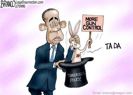 Obama pulls more gun control out of a hat