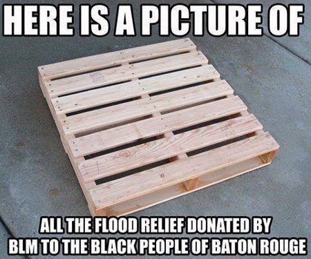 #BlackLivesMatter Baton Rouge Relief Effort = Absolutely Nothing