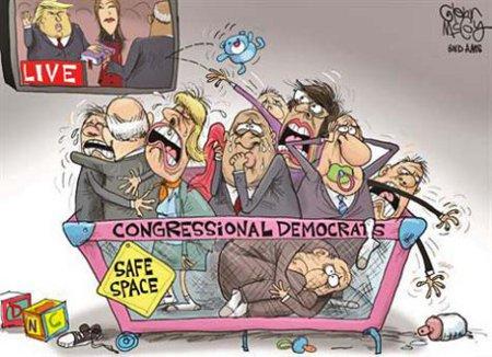 Congressional Snowflakes