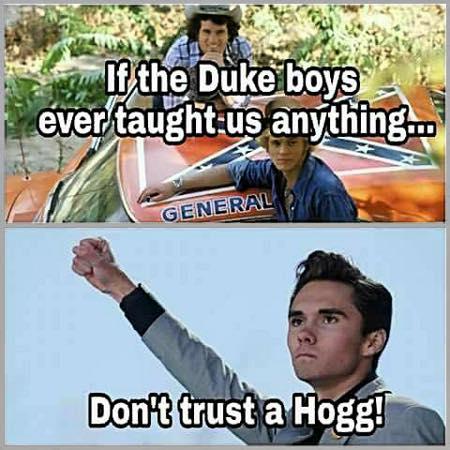Don't Trust A Hogg