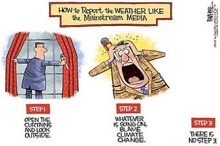MSM Weather Reporting