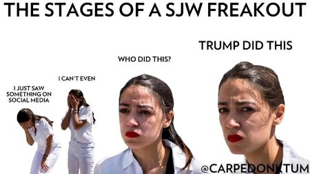 Stages Of A SJW Freakout