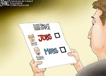 2020 Ballot Sample - Jobs (R) or Mobs (D)