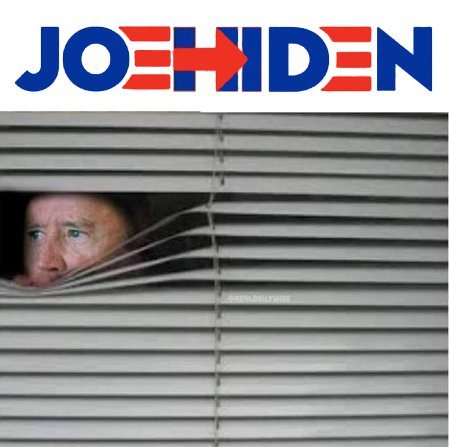 Joe Hiden - The Basement Candidate