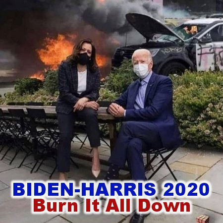Biden-Harris 2020 Burn It Down!
