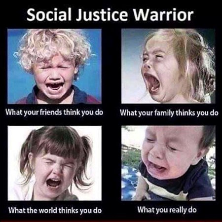 The Social Justice Warrior