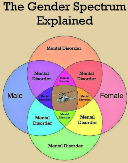 gender-spectrum
