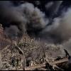 World Trade Center Jihadi Attack - 03