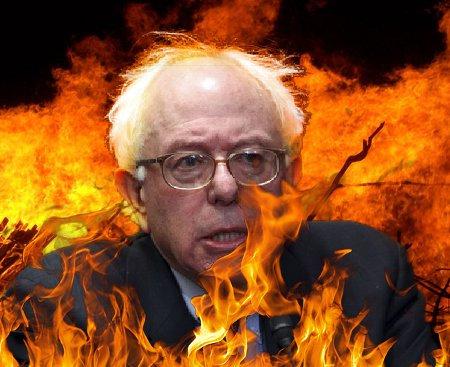 Bernie's Self-Immolation