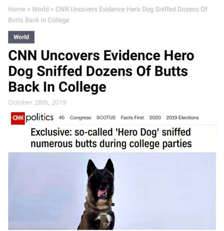The Dog Daze Of CNN