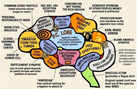 The Liberal Brain